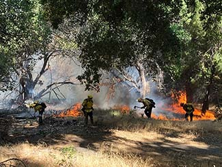 Firefighters working along the Lake Fire in Los Angeles County in California in August.
