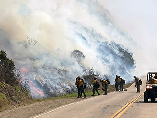 A hot shot crew works on a burnout operation as part of the Dolan Fire response.