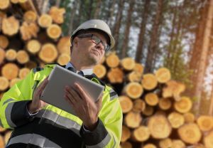 a forestry worker with a tablet in the outdoors