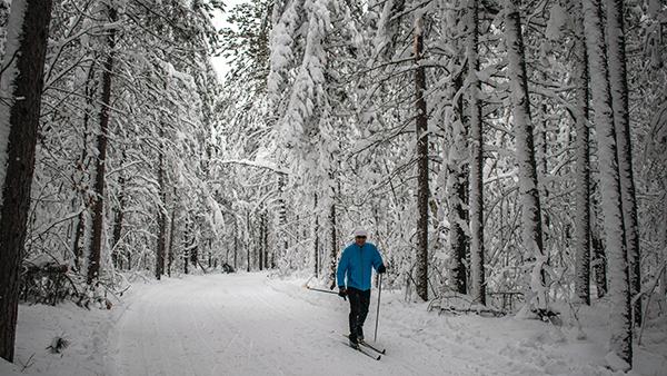 cross-country skier on Blueberry Ridge Pathway