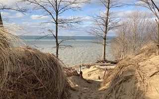 view of the sand dunes and trees opening out to the Lake Michigan shoreline, blue sky
