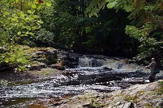 An angler wrestles a brook trout on an Upper Peninsula stream.