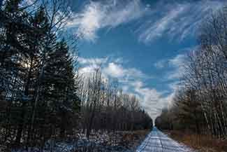 A backwoods road is shown on a winter afternoon.