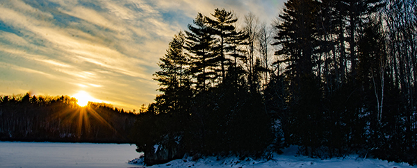 sun setting over snowy pine forest