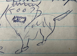 """A small drawing of the """"Grizzly Mouse"""" is shown."""