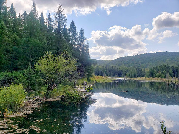 A tranquil scene shows a quiet lake from the Jordan River Valley in Antrim County.