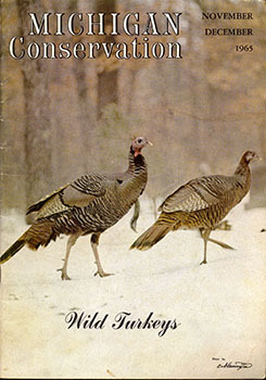 A cover from the November-December 1965 issue of Michigan Conservation is shown.