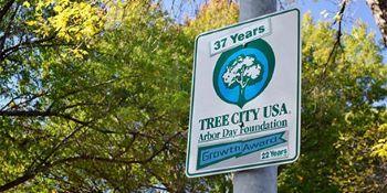 Tree City USA banners hang from a municipal street postr