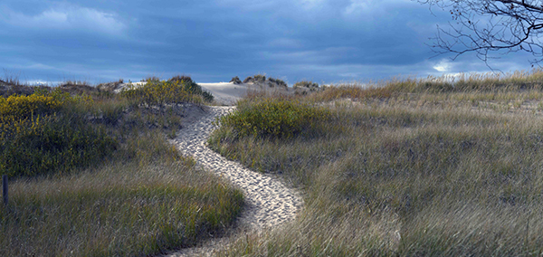 A well-traveled path is shown over the beach dunes at Ludington.
