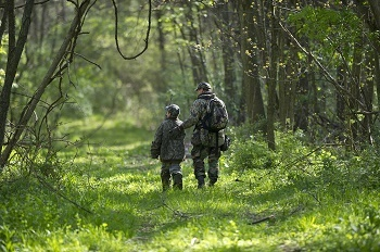 Spring turkey hunt, a view of an adult and child, dressed in hunter camouflage, walking away down a forested trail