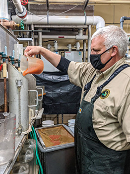 A DNR staffer works with fish eggs at the Lower Manistee River Weir and Egg Collection Facility.