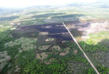 An aerial shot showing a blackened 400-acre spot on the landscape where the Colfax Fire burned in Wexford County; parts are still smoking.
