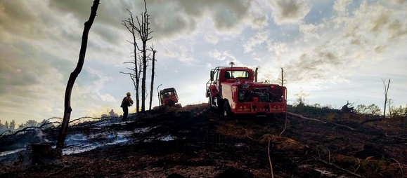 A fire truck sits atop a burned hillside with skeletal trees reaching into the sky after a fire in the DNR's Atlanta Forest Management Unit.