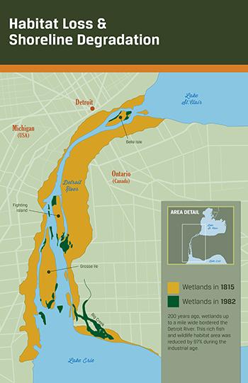 map showing habitat loss on Detroit River