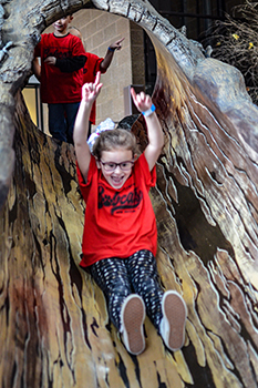 young girl goes down tree slide at Outdoor Adventure Center