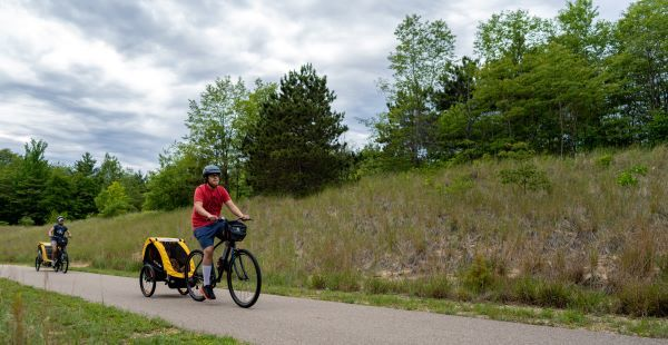 Cyclists with child-trailers use a paved path lined with trees and shrubs