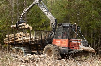 A machine with a claw lifts aspen logs as part of a harvesting operation