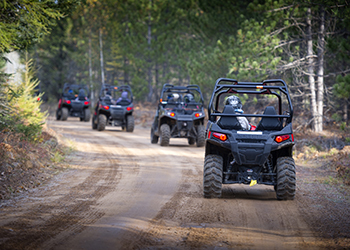 a line of ORVs riding a trail