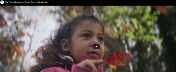 A video screenshot featuring a young girl holding a leaf in the outdoors