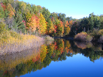 Platte River in the fall