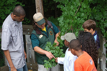 DNR staffer showing group of kids how to identify a tree
