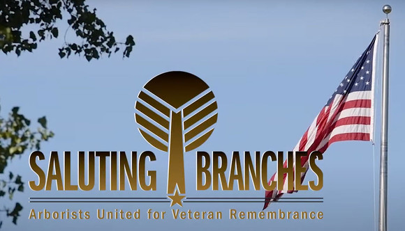 Saluting branches program: arborists united for veteran remembrance. Words on a sky blue background with American flag and tree leaves.