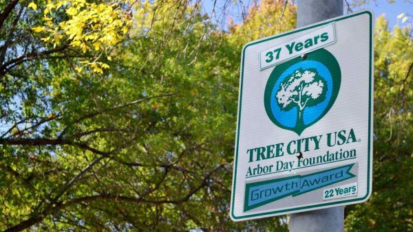 """A street sign that says """"tree city USA"""" in a tree-lined neighborhood"""