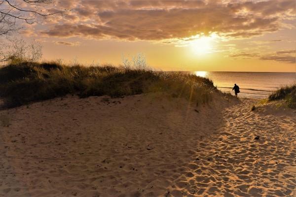 port crescent state park dunes