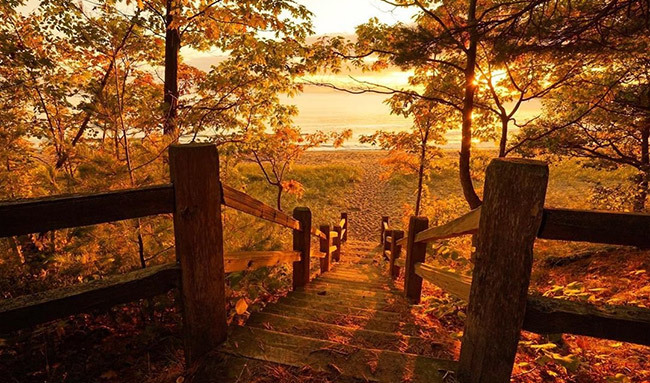 check out these Pure Michigan deals and packages