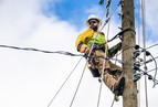 A lineman on the electrical pole.