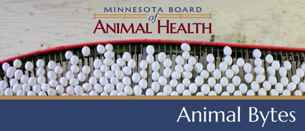 minnesota board of animal health animal bytes