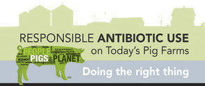 Responsible Antibiotic Use Workshops Logo