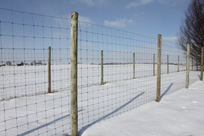 Example of exclusionary fencing.