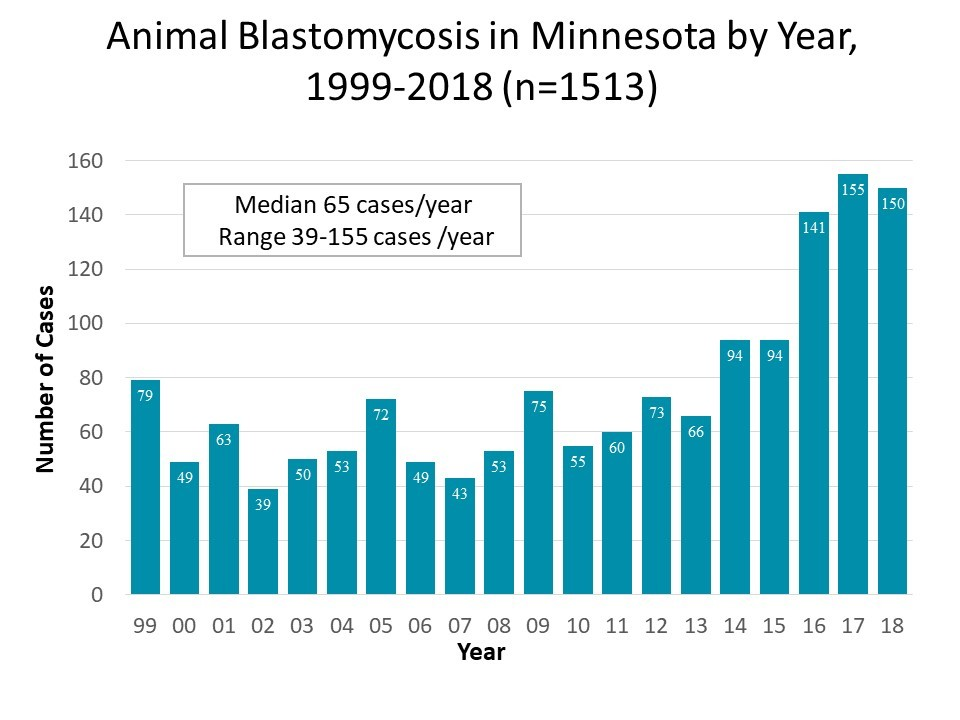 Cases of blastomycosis in Minnesota by year.