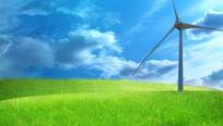 Wind turbine and grass