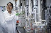 Woman working at lab
