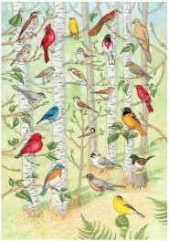 poster of minnesota birds