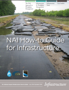 NAI infrastructure how-to guide cover