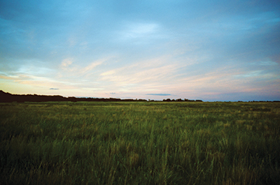 Summer prairie sunset at Bluestem Prairie SNA