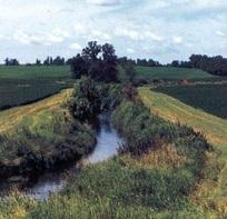 Ditch with longer grass buffer