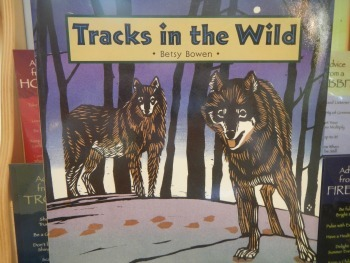 Tracks in the Wild book cover