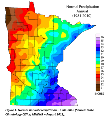 MN Average annual precipitation - state map with inches/year