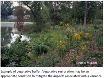 Vegetative buffer example
