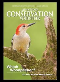 Cover of Minnesota Conservation Volunteer magazine