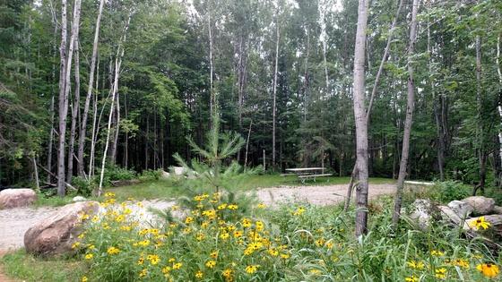 new campground Vermilion-Soudan State Park