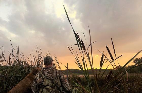 duck hunt sunrise