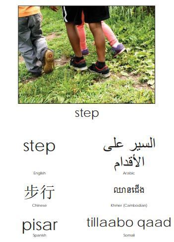 step in multiple languages