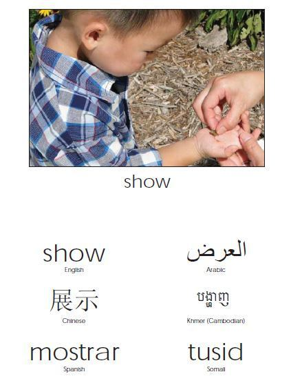 show in many languages