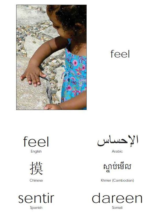 feel in many languages