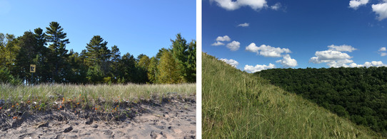 Minnesota Point Pine Forest and Mound Prairie SNAs